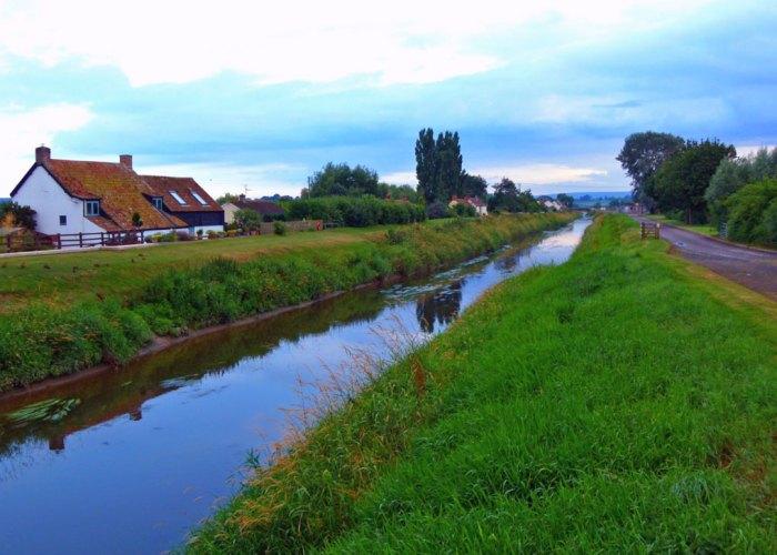 River Tone, Athelney