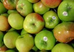 Bramley Apples, large, green and great for cooking