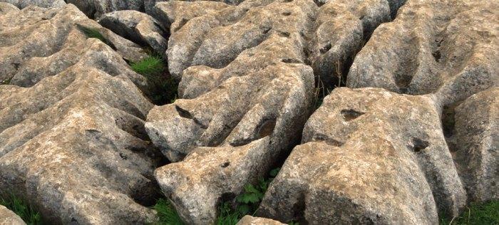 Limestone pavement feature