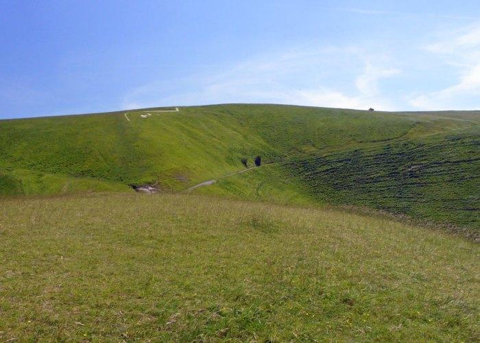White Horse, Dragon Hill, Manger