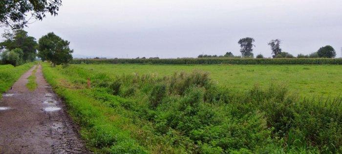 Battle of Sedgemoor
