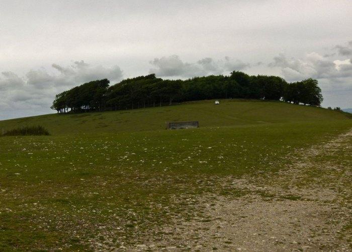 Chanctonbury Ring