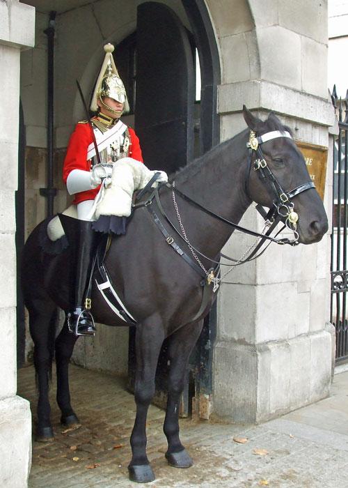 Queen's Life Guard