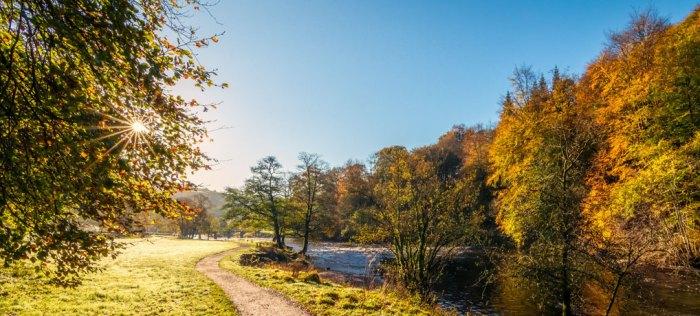 River Wharfe, autumn