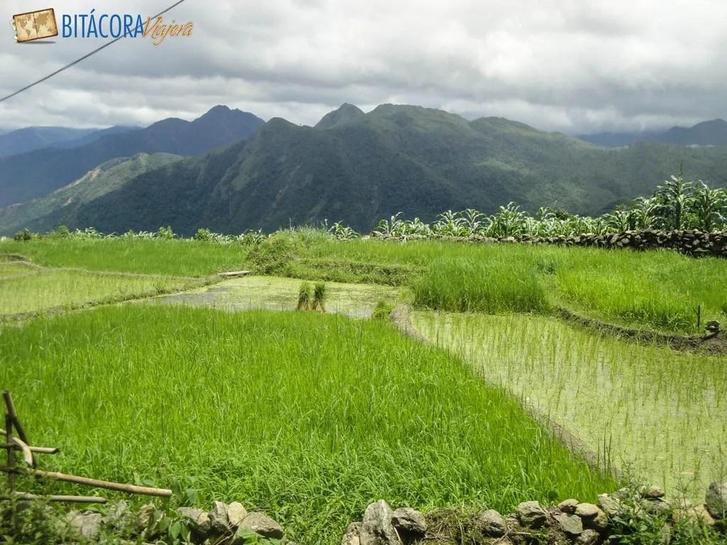 trekking-sapa-vietnam-7