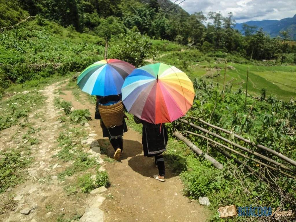 trekking-sapa-vietnam-9