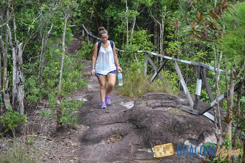Parque Nacional Bako - Borneo Malasia (7)