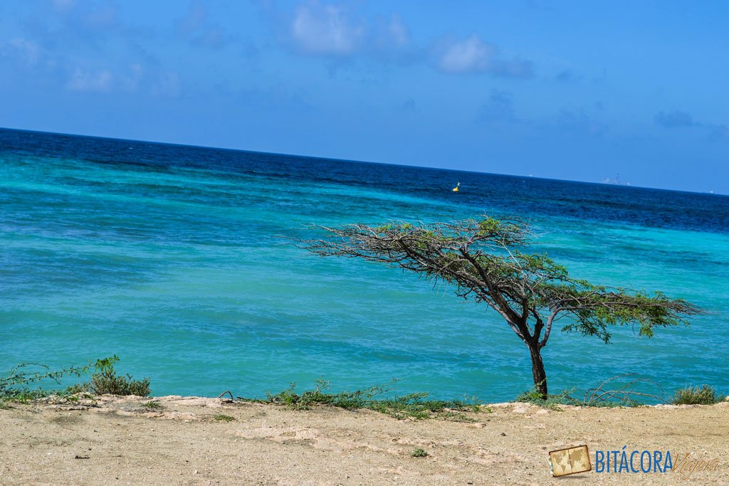 aruba-one-happy-island-1