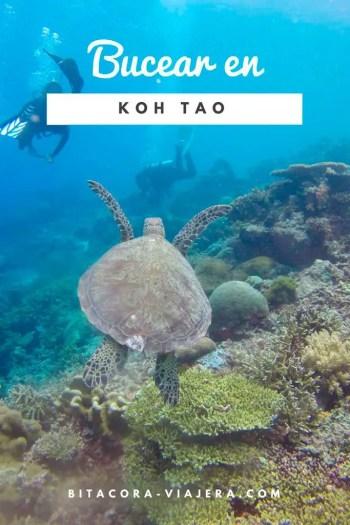 koh tao el paraíso del buceo en tailandia
