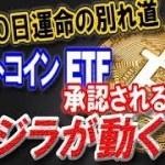 【仮想通貨】世界が注目!!! ビットコインETFが承認されると…クジラが一斉に動き出す!!! 運命は8月10日