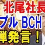 【仮想通貨】SBI北尾社長リップル BCH(ビットコインキャッシュ)に爆弾発言!