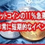 「ビットコインの11%急落は非常に短期的なイベント」投資ファンドCEOブライアン・ケリー氏