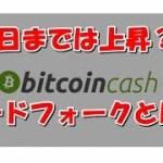 仮想通貨 ハードフォークとは? ビットコインキャッシュは15日まで上がる?