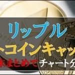 仮想通貨News:リップル・ビットコインキャッシュを週末まとめてチャート分析