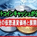 ビットコインキャッシュのハードフォークで通貨分裂を確認 今後の仮想通貨価格と展開は?