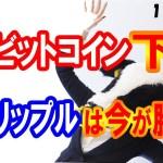 【仮想通貨】大ピンチ!? ビットコイン暴落!! リップルは正念場ですねー!!