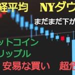 【仮想通貨】安易な買い超危険!リップル(XRP)、ビットコイン(BTC)まだまだ下がる?
