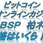 ビットコイン オンラインカジノ BSP 柏木 価格はいくら!?