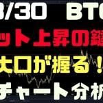 3/30【BTC】ビット上昇の鍵は大口が握る!チャート、LS比率分析
