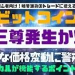 【暗号通貨】ビットコイン急落に警戒!!仮想通貨