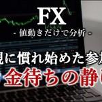 【FX】悲観に慣れ始める市場参加者、引き金持ちの静けさか(2019年5月27日)
