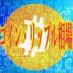 【仮想通貨】リップル最新情報❗️ビットコイン・リップル相場解説💹