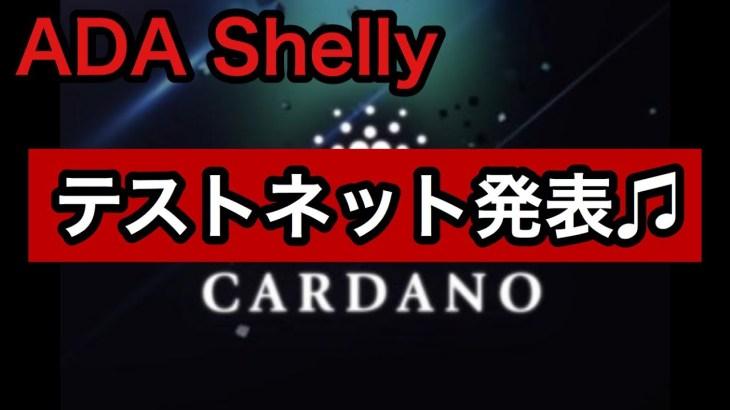 カルダノADA遂に動き出す!!Shelly テストネット発表♪~モニカの暗号資産(仮想通貨)ニュース情報局~