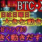 【仮想通貨】ビットコイン・リップル 日曜日は大きく動かず。BTCは今月に大きく動く可能性あり!!