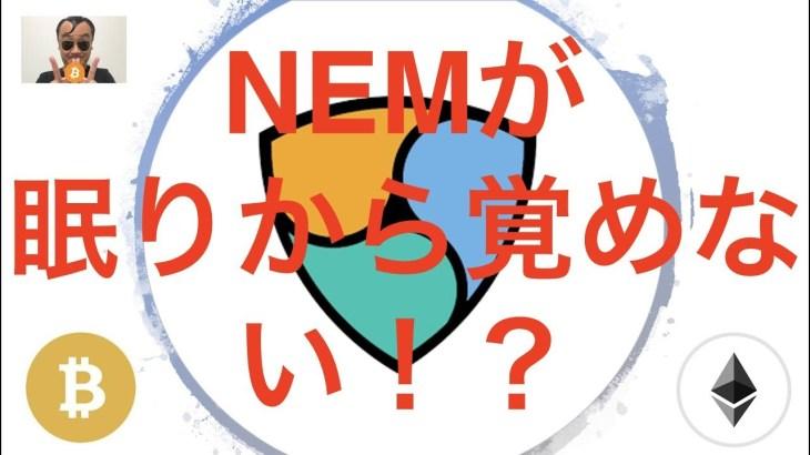 【まったり動画】仮想通貨ニュース NEM財団Catapult実装状況 たむけんさん仮想通貨復活!?