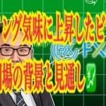 【仮想通貨】リップル最新情報❗️フライング気味に上昇したビットコイン相場の背景と見通し💹