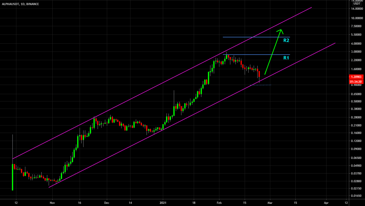 🔥 ALPHA Long Term Channel Trade