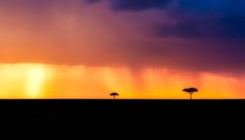 kenya-2530162_1280