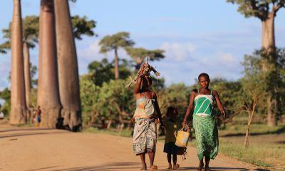 EcoHack Africa