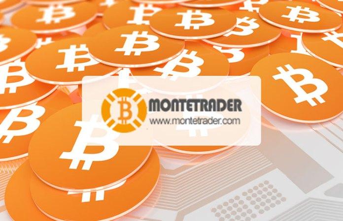 MonteTrader
