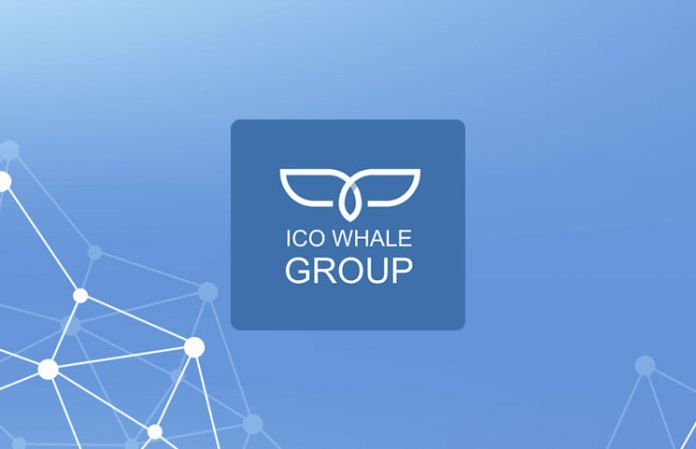 ico whale group