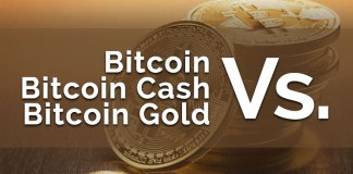 bitcoin vs bitcoin cash vs bitcoin gold