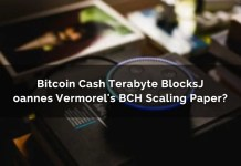 Bitcoin Cash Terabyte Blocks