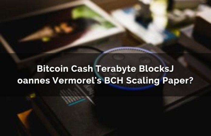 Bitcoin Cash Terabyte Blocks