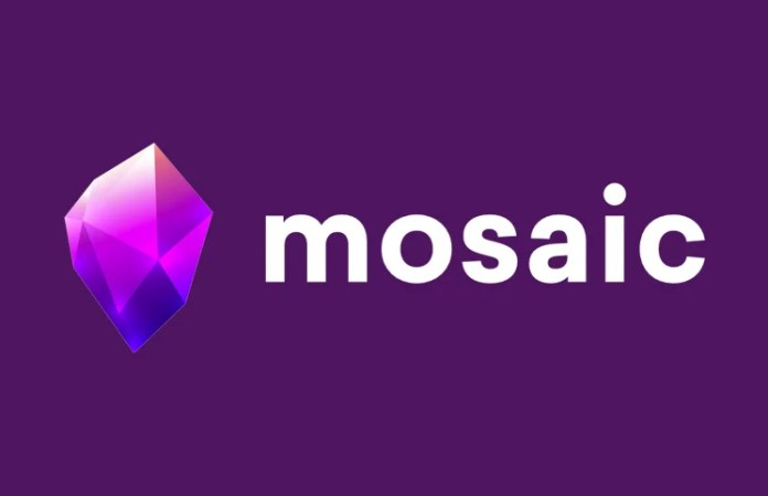 Mosaic MZX ICO Review
