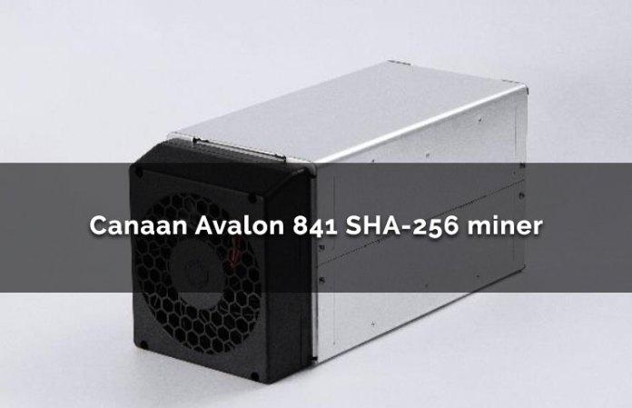 Canaan Avalon 841