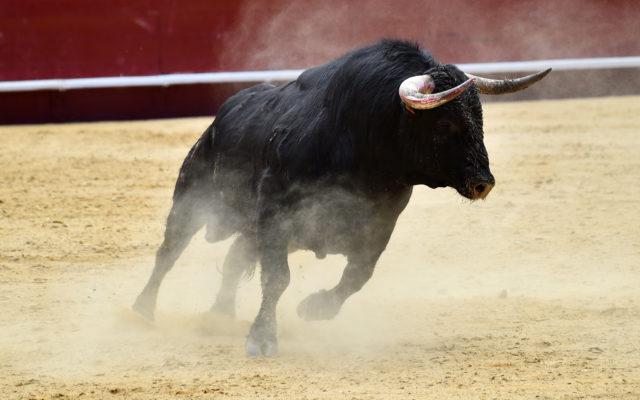 bitcoin price analysis bull bulls