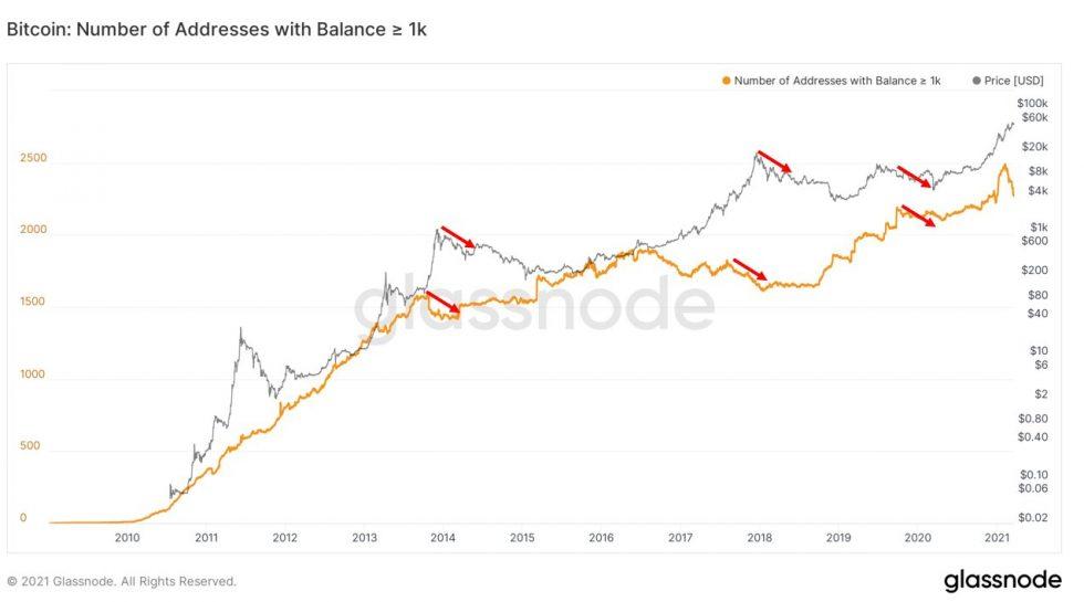 bitcoin bear market whales