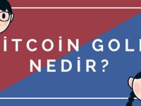 bitcoin gold nedir
