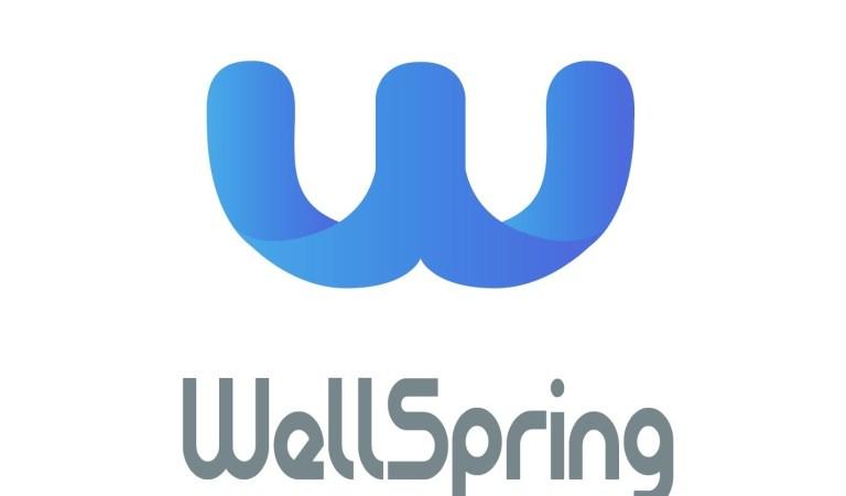 WellSpring – Blockchain Topluluklarını Birleştiren Köprü – Reklam