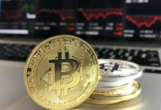 Bitcoin on the Rise: Bullish Trends and the G20 Influence