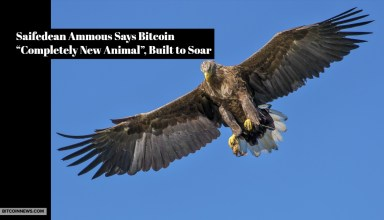 """Saifedean Ammous Says Bitcoin """"Completely New Animal"""", Built to Soar"""