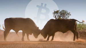 Despite Stock Market Disaster Predictions, Bitcoin Markets Permeate Bullish Signals