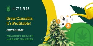 JuicyFields Press Release