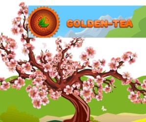 GOLDEN TEA Gana Bitcoin Jugando
