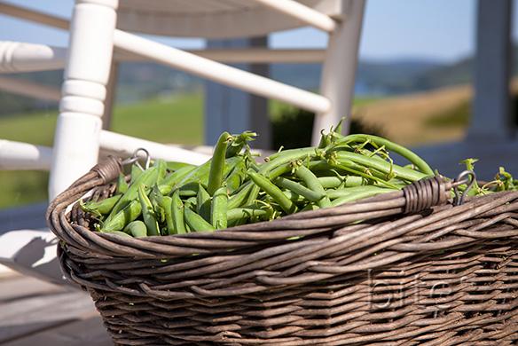 Green Bean Antipasta della Casa